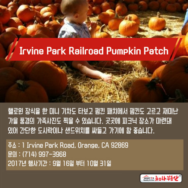20170927_newstarrealty_Ad_pumpkinpatches07.jpg