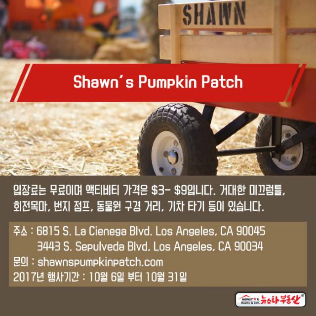 20170927_newstarrealty_Ad_pumpkinpatches10.jpg