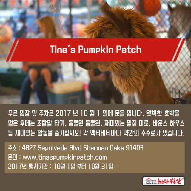 20170927_newstarrealty_Ad_pumpkinpatches12.jpg