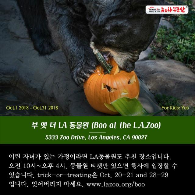 20181005_halloween-10.jpg